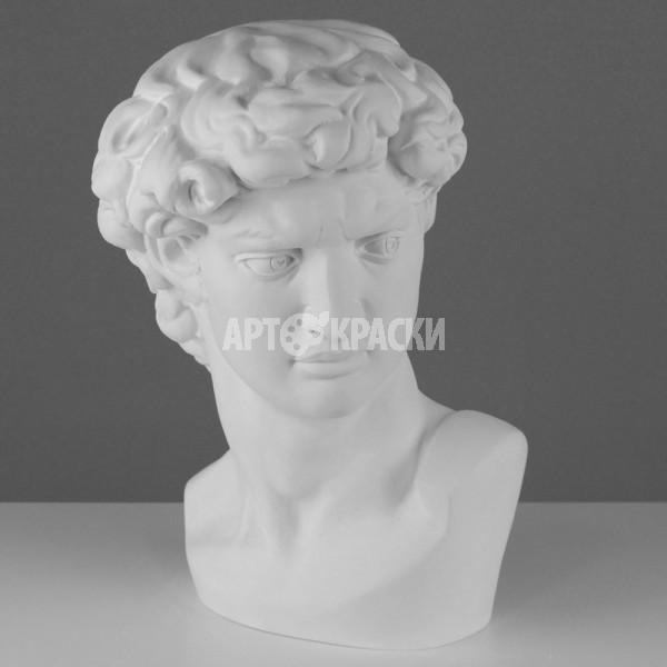 Голова Давида Микеланджело из гипса