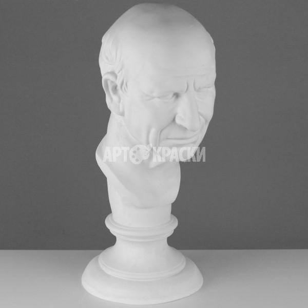 Голова римлянина из гипса