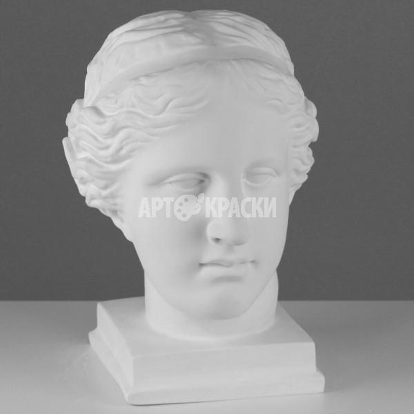 Гипсовая голова Венеры Милосской
