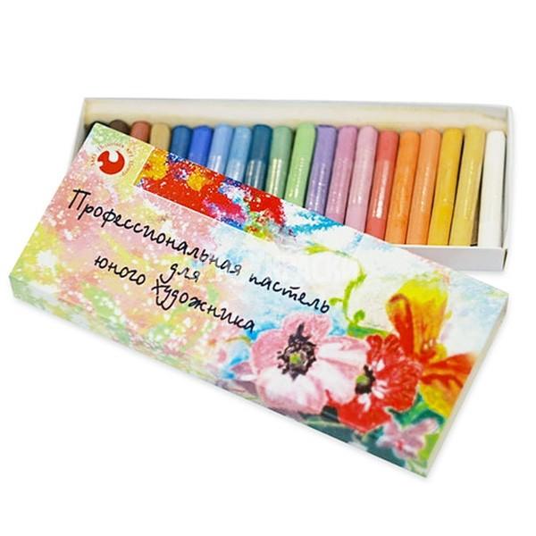 Набор сухой пастели «Юный Художник» 20 цветов в картонной коробке