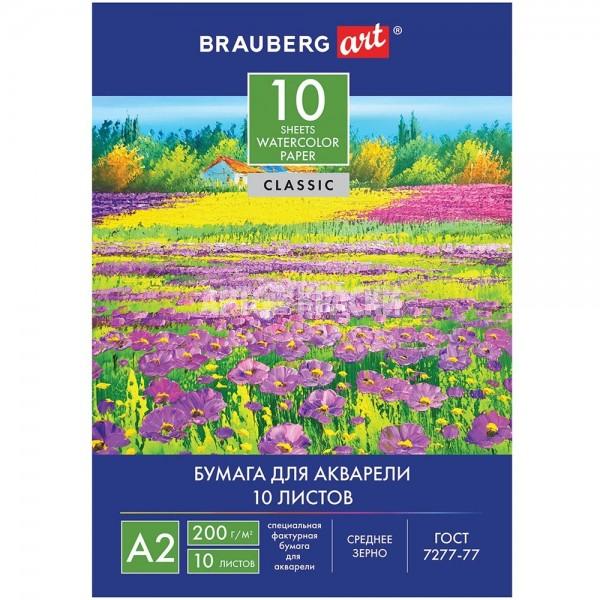 """Папка для акварели BRAUBERG """"Цветочный луг"""" А2 10 листов"""