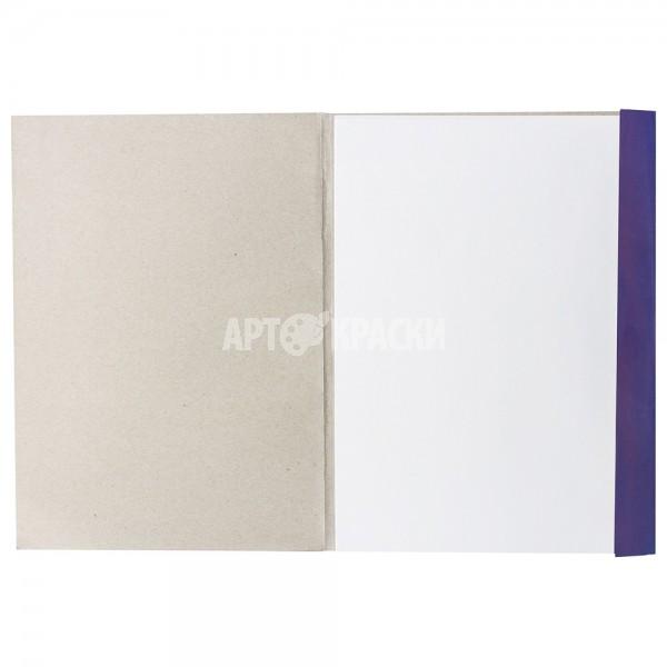 """Папка для рисования """"BRAUBERG"""" А4 20 листов"""