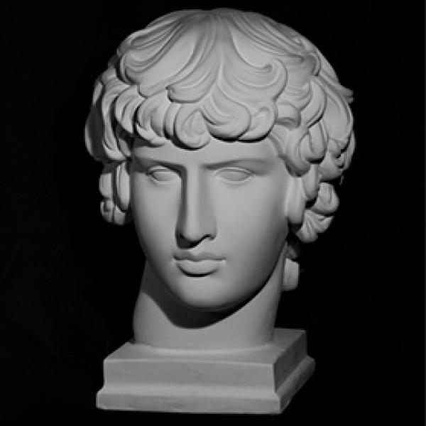 Голова Антиноя из гипса