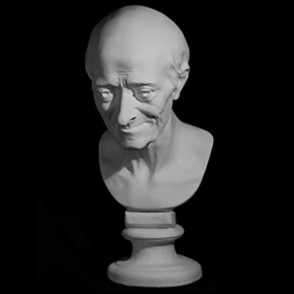 Голова Вольтера из гипса