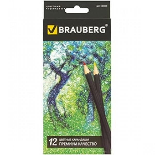 """Набор цветных карандашей BRAUBERG """"Artist Line"""" 12 цветов"""