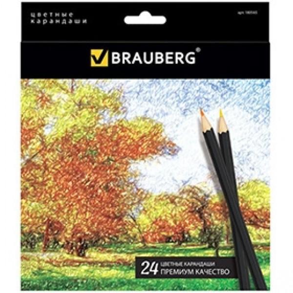 """Набор цветных карандашей BRAUBERG """"Artist Line"""" 24 цвета"""