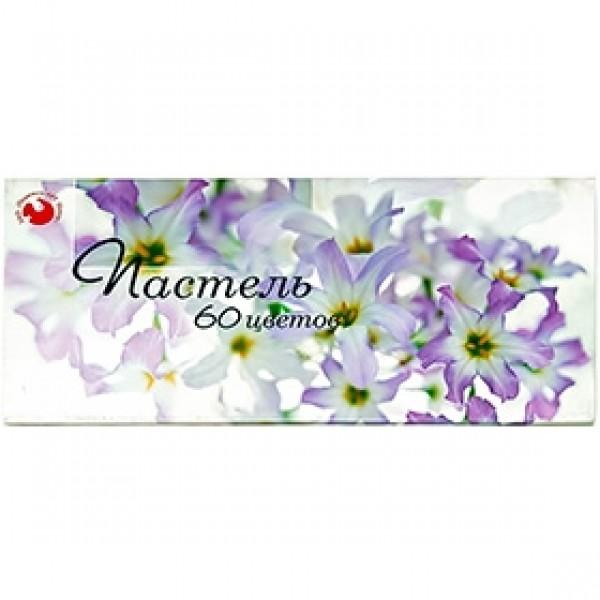 Набор сухой пастели «Подольск Арт-Центр» 60 цветов в картонной коробке