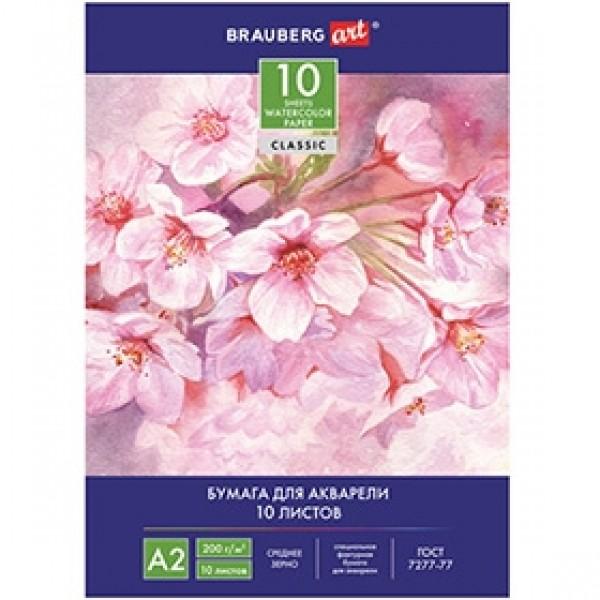 """Папка для акварели BRAUBERG """"Цветы"""" А2 10 листов"""