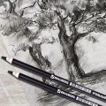 """Угольный карандаш """"BRAUBERG ART CLASSIC"""" твердый"""